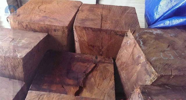 Gỗ hương hay còn gọi là gỗ giáng hương